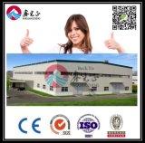 Экспертный поставщик мастерской стальной структуры (BYSS005)