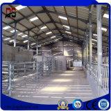 Nuevos materiales de construcción baratos prefabricados para la casa de la granja de ganado