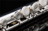 よい初心者のフルートの/Bのフィートのフルート/安く木管楽器器械