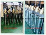 4sk submersible Pompe à eau de puits de forage de puits profond