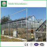 Serre chaude commerciale de polycarbonate avec la privation légère automatique
