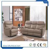 Insieme supplementare d'ardore del sofà di disegno di lusso completo dell'ammortizzatore grande