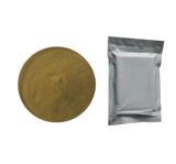 El mejor petróleo del ajo del negro de la calidad de los surtidores de China