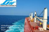 35t granel cubierta Carga Marítima grúa de ABS
