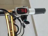 Großhandelsfalz-intelligentes elektrisches super helle Legierungs-Fahrrad