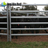 70 x 40 ovale Schienen-Vieh-Panels