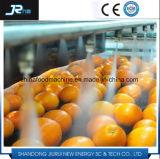 マンゴおよびにんじんの産業果物と野菜のクリーニング機械