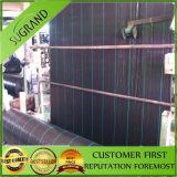 Fabriek 100% van China HDPE Bovenkant die het Groene Grondzeil van de Kleur verkopen