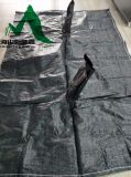 Sacchetto tessuto pp/sacchetto d'asciugamento per la spiaggia di erosione