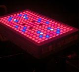 10의 스펙트럼 IR 실내 Hydroponic 시스템 900W LED는 빛을 증가한다