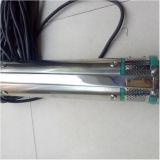 Faire vous-même de la pompe à eau solaire pour l'Agriculture de la pompe à eau solaire