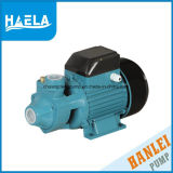 1/2HP pompe à eau de vortex de haute performance de série du câblage cuivre Qb60
