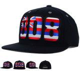 Diseño de Moda plana Snapback sombreros con logotipo bordado