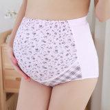 Biancheria intima incinta 100% di maternità di Panty Panty di grande formato di Panty del cotone