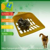 Tofu de carbón activo en la fábrica con venta de gatos