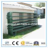 Panel der USA-schwarzes überzogenes lang verwendetes Hürde-10foot/Pferden-Hürde-Panel