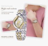 De Juwelen van het Roestvrij staal van de Legering van het Horloge van Wrisr van de Dames van Belbi zogen Beweging Drie van Japan van de Horloges van de Vrouwen van het Kwarts van de Reeks van de Ster de Weerstand van het Water van Naalden