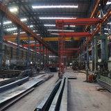 Oficina pré-fabricada da construção de aço da grande extensão do projeto