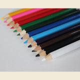 El tamaño de la mitad de los lápices de colores naturales en el tubo de papel con la tapa de afilador
