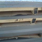 De professionele 201 304 304L 316L 321 309S 310S 904L Plaat van het Roestvrij staal