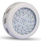 Illuminazione completa di spettro LED per il trasporto libero dell'interno della serra