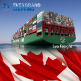 De concurrerende Overzeese Vracht van de Oceaan & van China aan Canada/Vanvouver/Montreal/Toronto