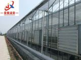 FULL Automatic Control Glass Greenhouse for Planting
