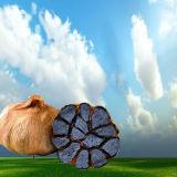 Orgánicos Antioxidant-Rich Peral bulbos de ajo negro