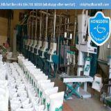De Hete Verkoop 50ton van China per de Machines van de Korenmolen van de Dag (50TPD)