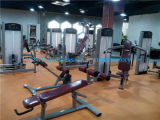Máquina de la prensa del pecho de la máquina de la gimnasia (XF01)