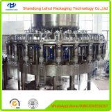 Automaticamente macchinario di materiale da otturazione dell'acqua di bottiglia in bottiglia dell'animale domestico