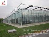 Венло стекла выбросов парниковых газов для выращивания овощей и цветов растущих