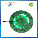 24W DEL Underwater Swimming Pool Light avec Two Years Warranty