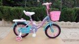 니스 디자인 (SR-D101)를 가진 아이 자전거