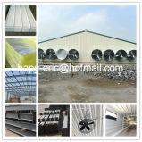 Alta qualità Prefabricated Chicken Shed e Chicken Farm