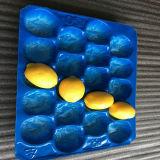 Geeignet für umweltfreundliches pp. Plastikwegwerftellersegment der unterschiedlichen Frucht-unterschiedlichen Größen-für Frucht