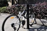 二重D様式の屋外のボラードのバイクラック