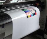 Auto-adhésif PP de colorant Encre/ Eco-Solvent encre