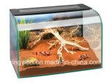 Super calidad Cuadro de reptiles terrarios de acrílico con iluminación LED de noche