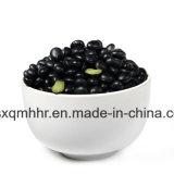 Китай поставщиком черного обыкновенная фасоль