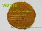 Hot Sale la farine de gluten de maïs avec le plus bas prix de protéine de 60%Min