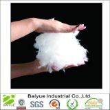 Relleno de fibra de poliéster de color blanco y bateando - 5 libras