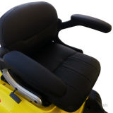 Comfortable Seatの熱いSale 3 Wheel Electric Travel Mobility Scooter