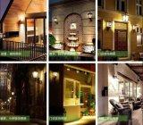 Banheira de vender o novo design do melhor preço de luz para iluminação de grama ou Jardim