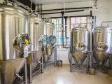 Matériel électrique de fermentation de bière de chauffage, matériel commercial de brassage de bière (ACE-THG-Q1)