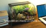 Super calidad acrílico Terrarium Reptile Box con iluminación de noche LED