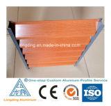 Profil en aluminium pour rolling shutter/ profil de construction