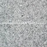 Lastre Polished grigio-chiaro del granito G603 con il prezzo competitivo