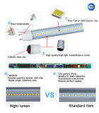 140lm / W Doble alto lumen LED T8 tubo de luz