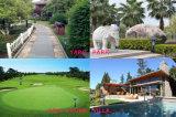 중국 태양 강화된 모기 살인자 램프; 야드, 공원, 골프 Coure, 별장 etc.에서 널리 이용되는;